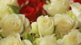 红色和白玫瑰,特写镜头明亮的五颜六色的花束  股票录像