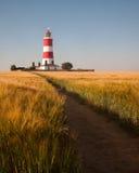 红色和白色灯塔在玉米田 免版税库存图片