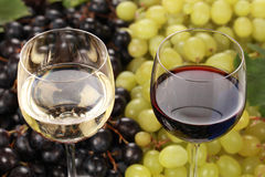 红色和白葡萄酒 免版税库存照片