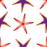 红色和紫色海星样式