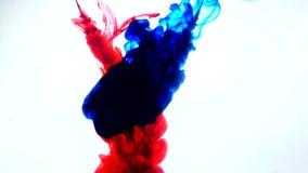 红色和蓝墨水在水中 创造性的慢动作 在一个空白背景 抽象背景 免版税库存照片