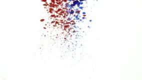 红色和蓝色油下落在倾吐在然后上升的备份下的水中对顶面慢动作 股票录像