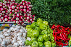 红色和青椒、荷兰芹和莳萝、萝卜和大蒜在逆市场上 库存图片