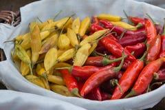 红色和黄色干辣椒在白色碗里面 免版税库存照片