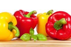红色和黄色辣椒粉 免版税库存照片