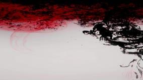 红色和贷方在水中 创造性的慢动作 股票录像