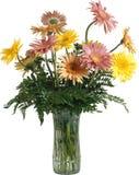 红色和黄色花美丽的花束在一白色backgroun的 免版税库存图片