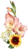 红色和黄色花美丽的花束在一白色backgroun的 免版税库存照片