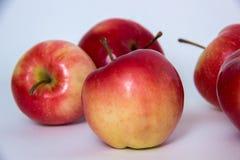 红色和黄色苹果 免版税图库摄影