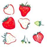 红色和绿色草莓 图库摄影
