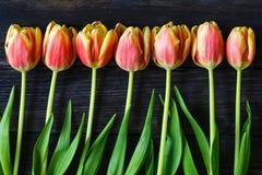 红色和黄色郁金香花束  免版税库存照片