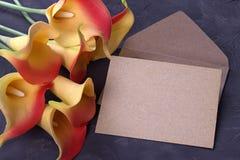 红色和黄色水芋百合开花与在膏药灰色背景的信封 复制空间 免版税库存照片