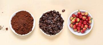 红色咖啡豆莓果、烤咖啡和咖啡粉末 图库摄影