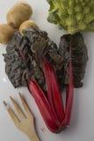 红色唐莴苣和菜 免版税库存照片