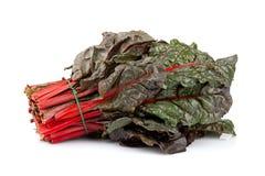 红色唐莴苣束 库存图片