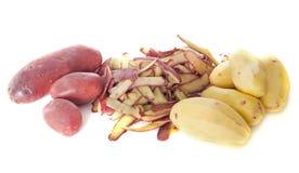 红色土豆 免版税图库摄影