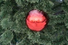 红色圣诞节球在杉树在左边装饰以强的光线影响做copyspace 贺卡templa的概念 库存照片