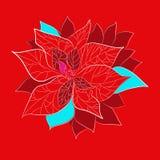 红色圣诞节花有在红色背景 免版税库存图片