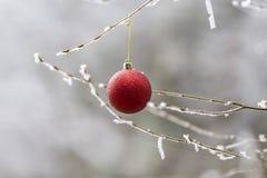 红色圣诞节装饰品 库存照片