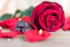 红色在木地板上的玫瑰花在华伦泰` s天 免版税库存图片