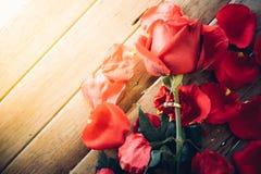 红色在木地板上的玫瑰花在情人节 免版税库存照片