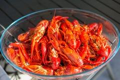 红色在清楚的玻璃碗的煮沸的小龙虾 免版税图库摄影