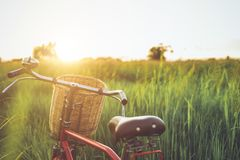红色在绿色领域的日本样式经典自行车 库存照片