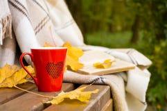 红色在长凳的一条毯子包裹的杯子和书 图库摄影