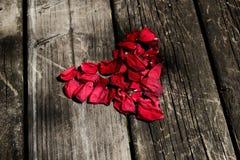 红色在年迈的木桌上的玫瑰心脏 免版税库存图片