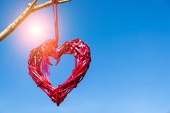 红色垂悬从树枝的国家柳条心脏反对蓝天;华伦泰` s天和爱概念与拷贝空间 免版税图库摄影