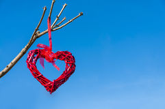 红色垂悬从树枝的国家柳条心脏反对蓝天;华伦泰` s天和爱概念与拷贝空间 免版税库存照片