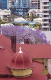 红色城市屋顶 免版税库存照片