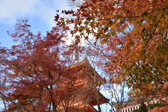 红色塔在日本 免版税库存图片