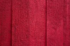 红色墙壁水泥背景 免版税图库摄影