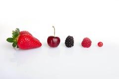 红色夏天果子, 库存照片