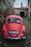 红色大众甲壳虫 库存照片