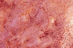 红色大理石纹理 免版税图库摄影
