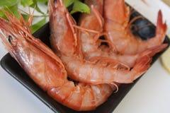 红色大虾用荷兰芹 免版税库存图片