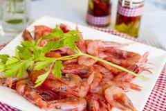红色大虾用荷兰芹 免版税库存照片