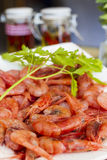 红色大虾用荷兰芹 图库摄影