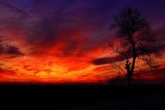 红色天空日落 免版税图库摄影