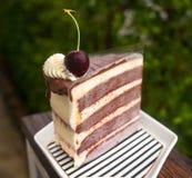 红色天鹅绒鞭子奶油乳酪蛋糕 图库摄影