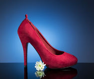 红色女性鞋子 图库摄影