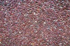 红色小卵石墙壁 库存图片