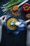 红色小扁豆奶油汤用新鲜蔬菜和草本装饰了 一个人吃汤 素食者概念 r 免版税库存图片