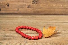 红色小珠和秋天叶子 免版税库存图片