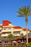 红色屋顶旅馆和偏僻的棕榈树 库存照片