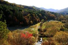 红色山的秋天风 免版税库存图片