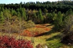 红色山的秋天风 免版税图库摄影