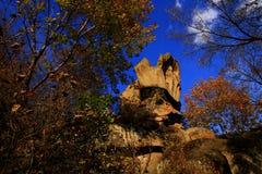 红色山的秋天风 免版税库存照片
